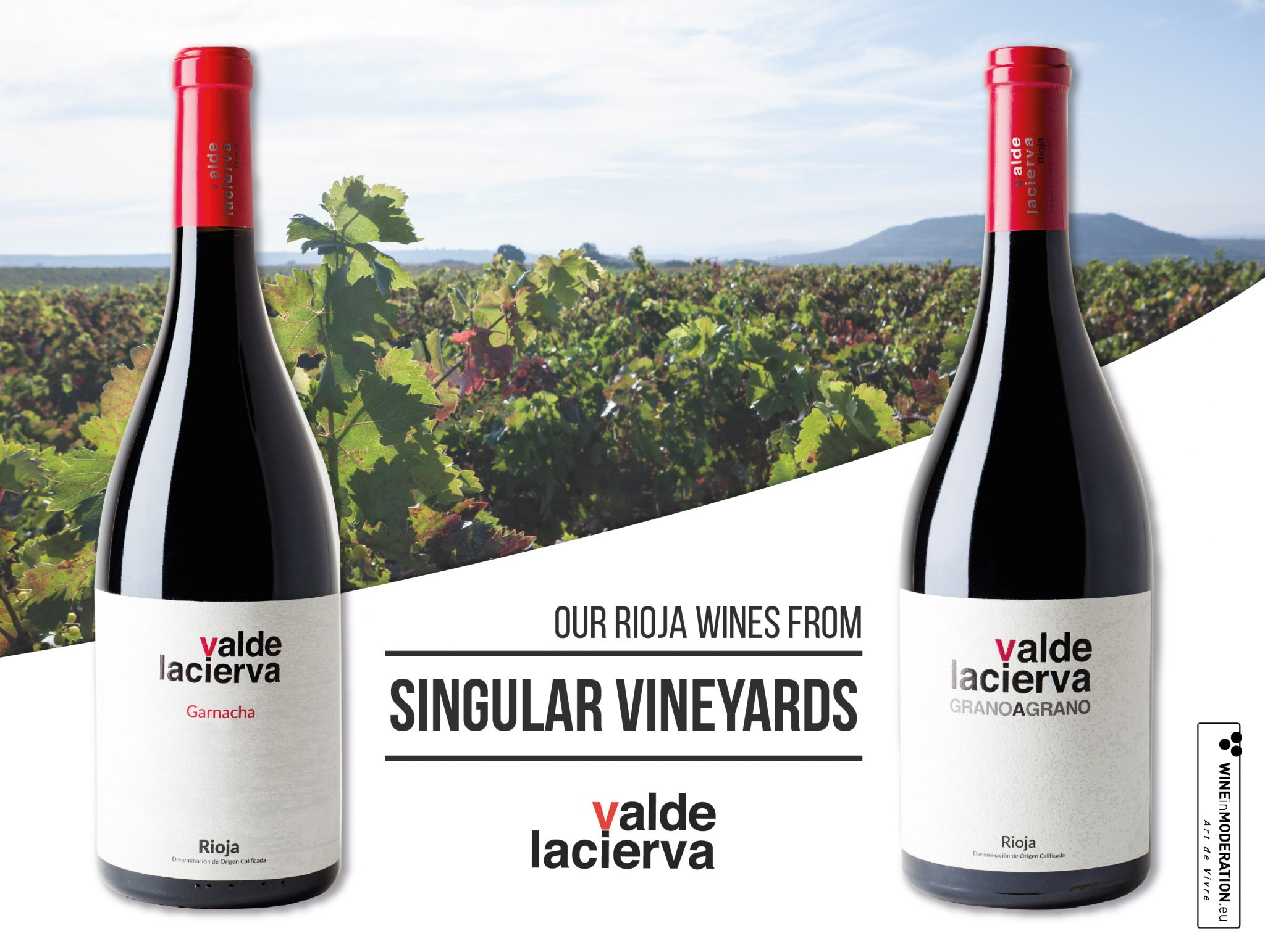 Valdelacierva Grano a Grano and Valdelacierva Garnacha, Singular Vineyard