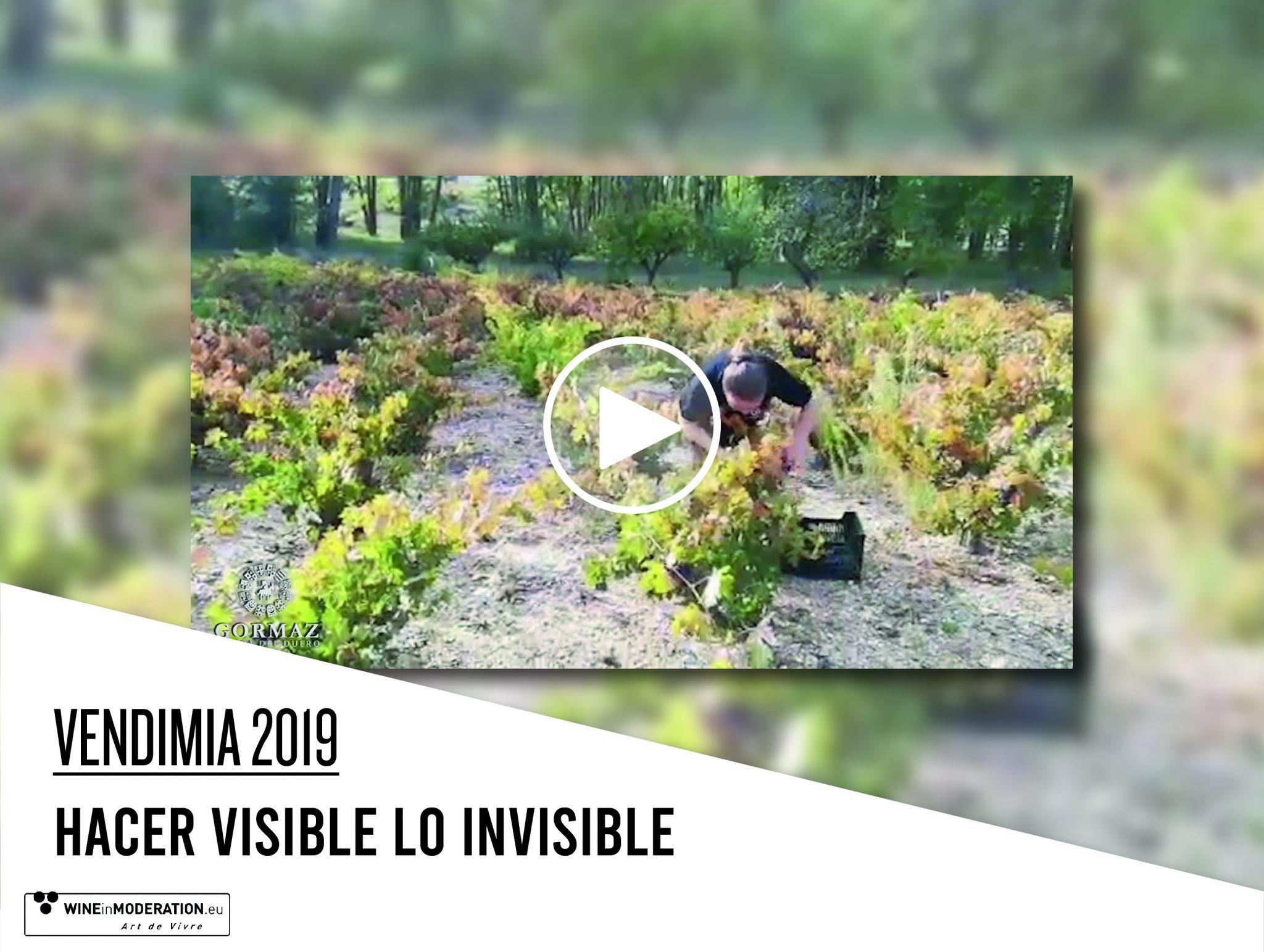 Hacer visible lo invisible: 12 Linajes Grano a Grano