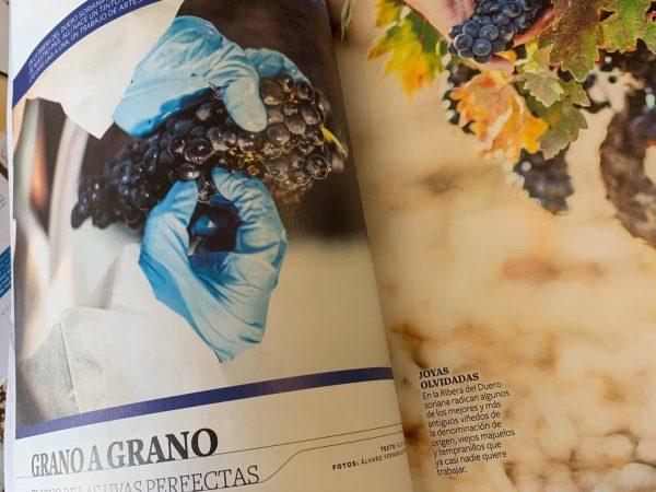 sobremesa vino articulo 12 linajes ribera del duero