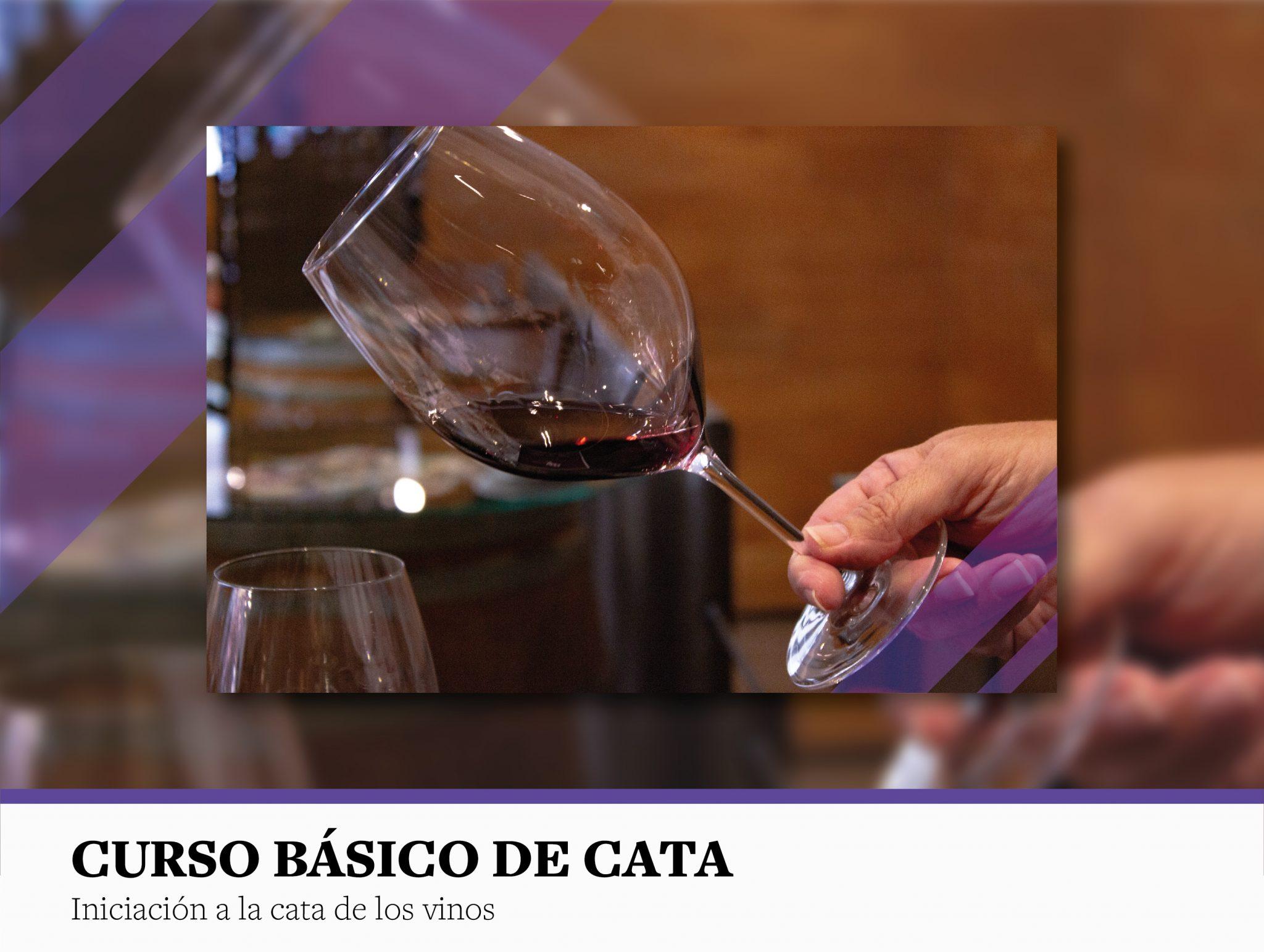 Curso básico de cata de vinos