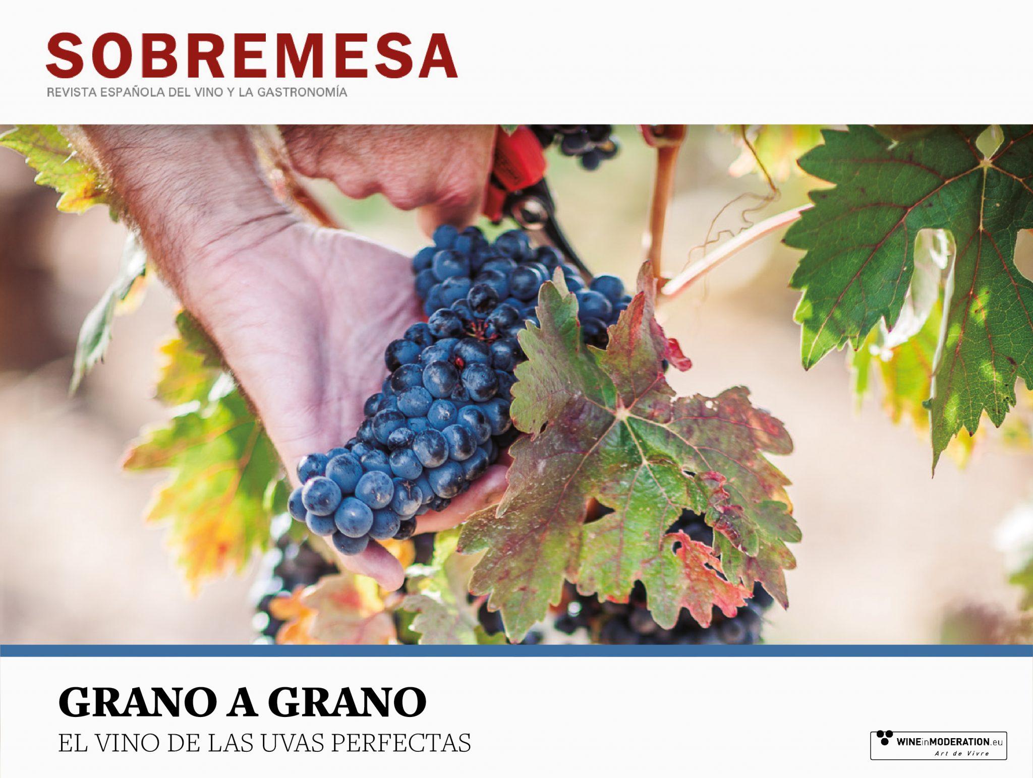 Grano a Grano, el vino de las uvas perfectas- Sobremesa