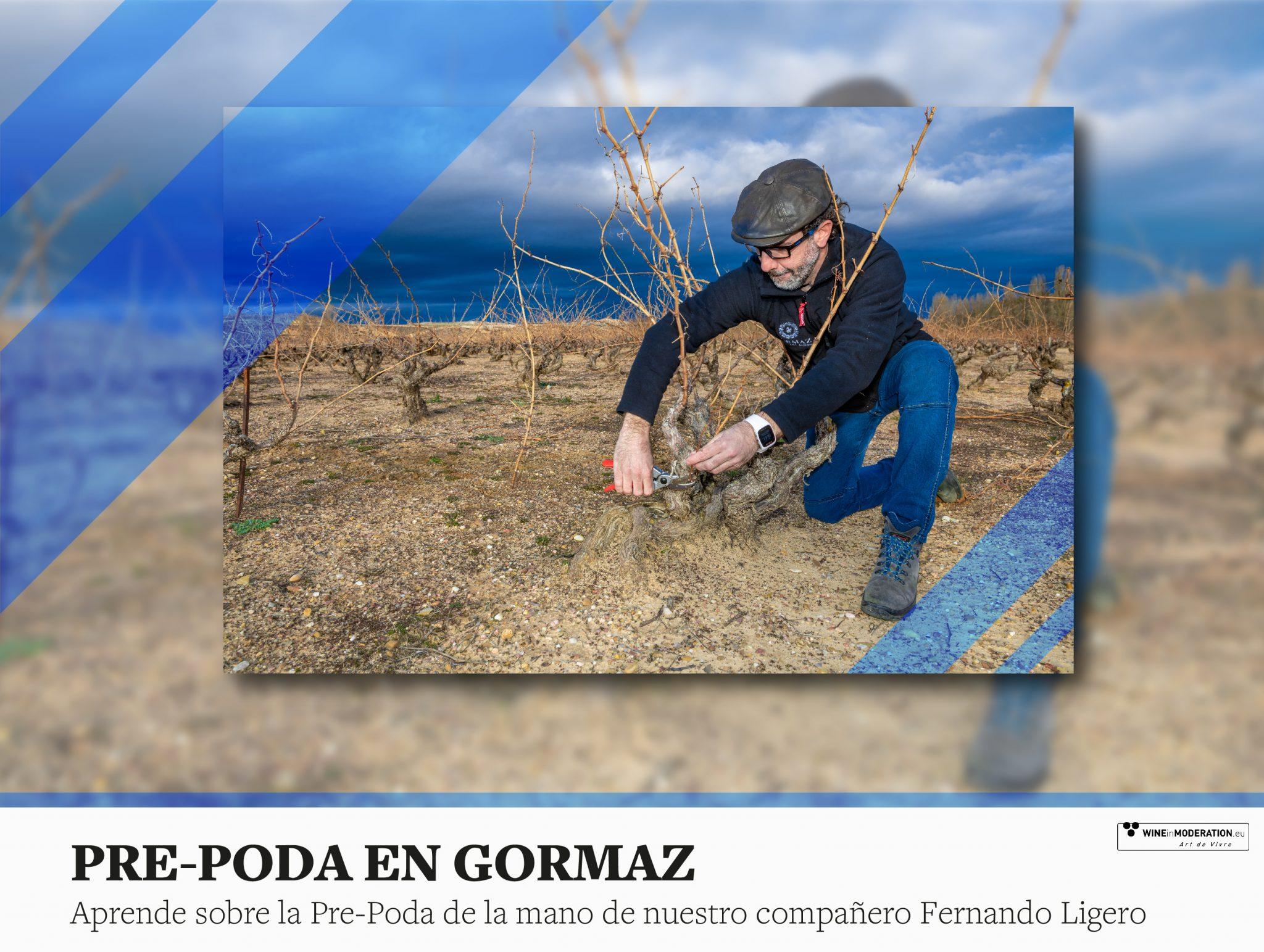 Tiempo de pre-poda en Gormaz