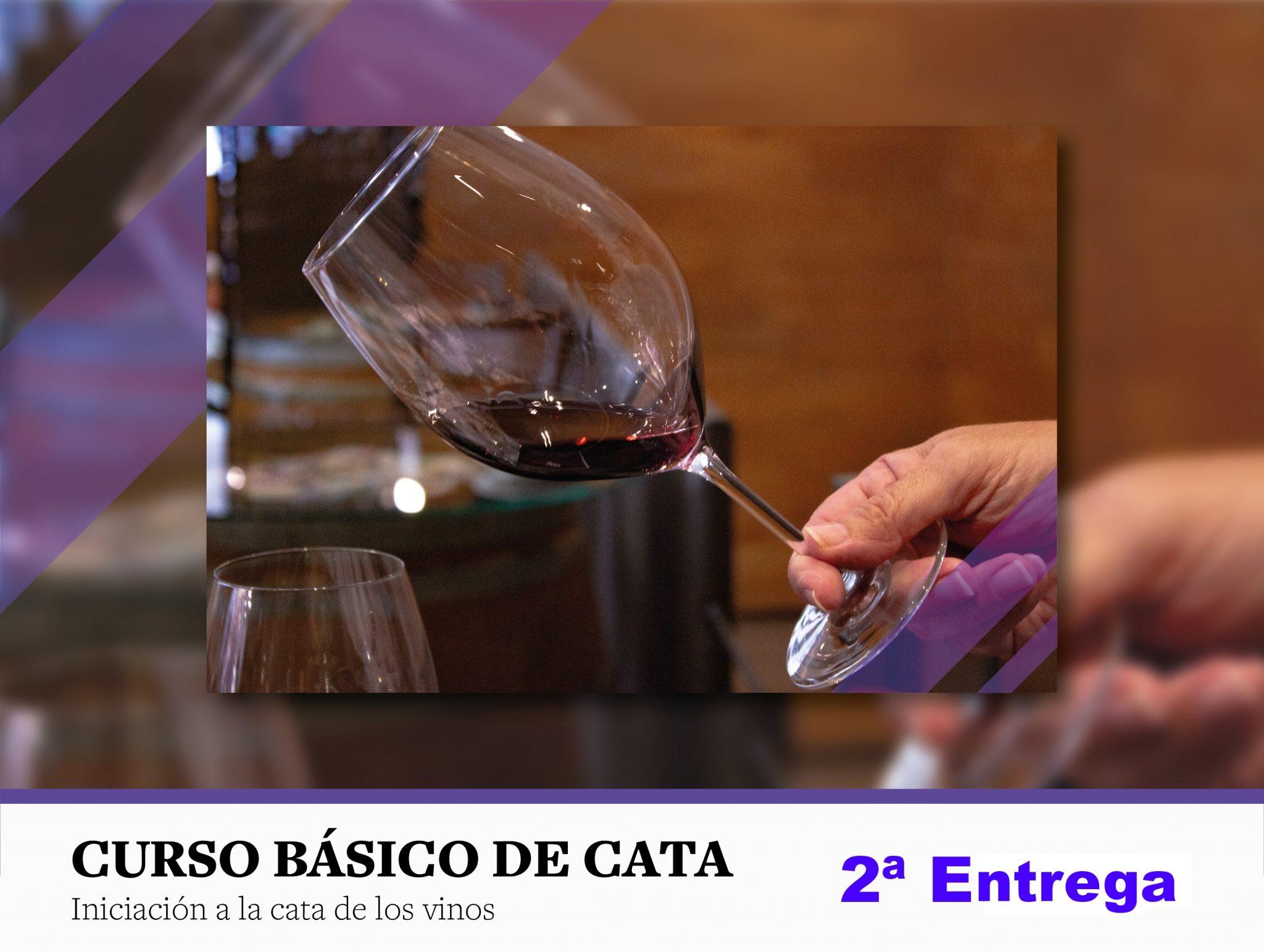 ¿Cómo se elabora un vino tinto? Segunda entrega