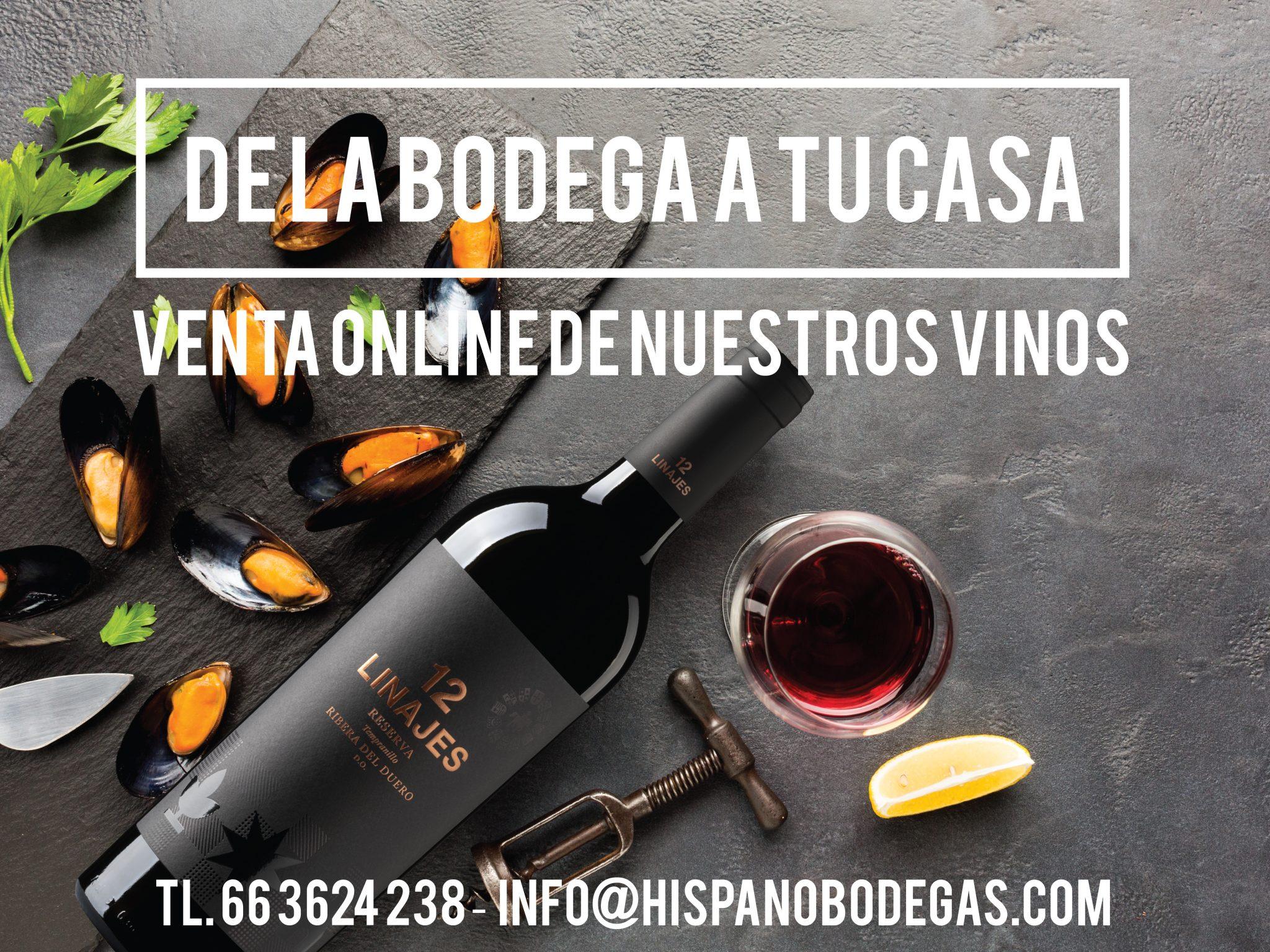 Compra tus lotes de vinos directos de bodega