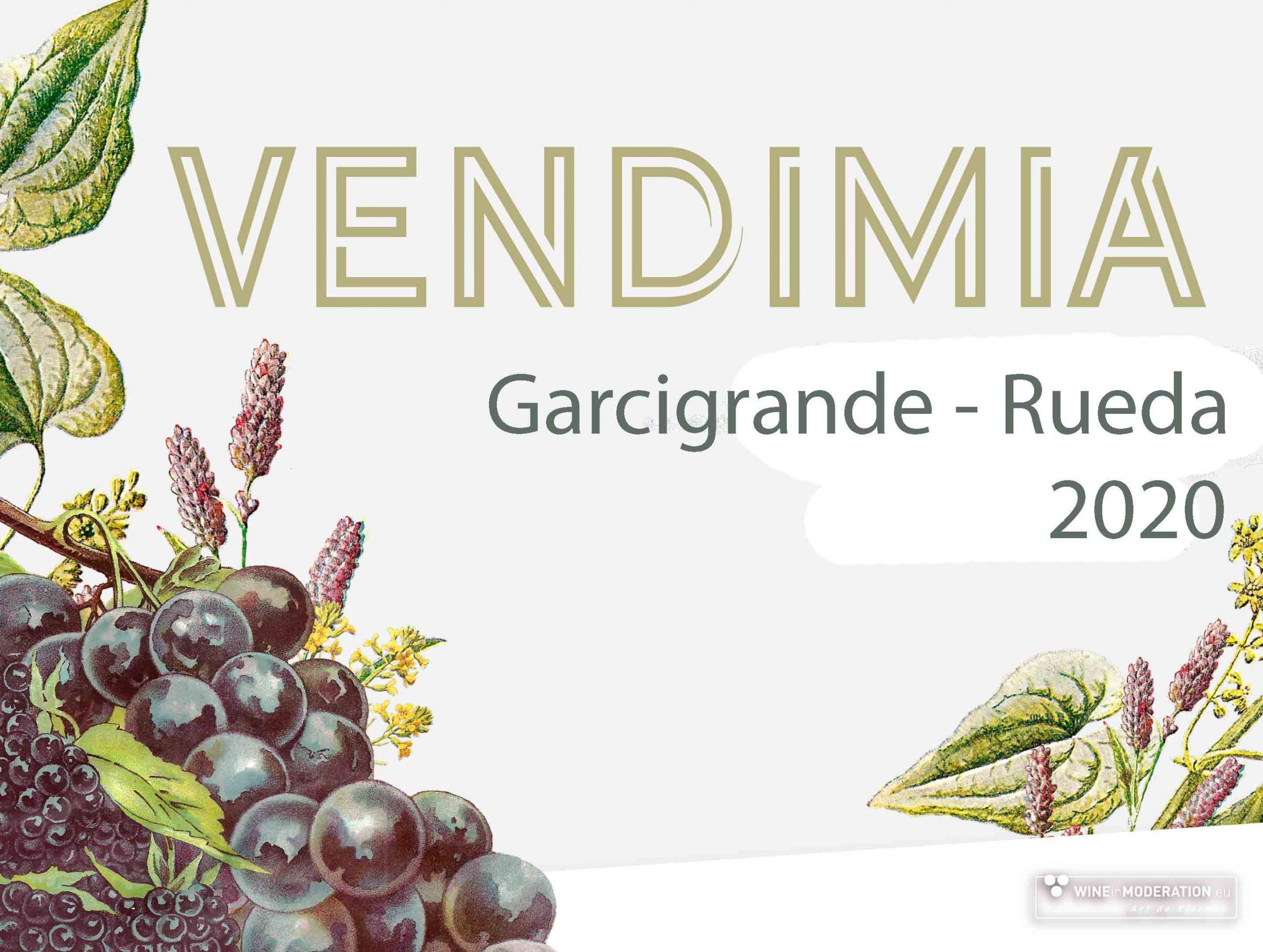 Vendimia 2020 – Rueda