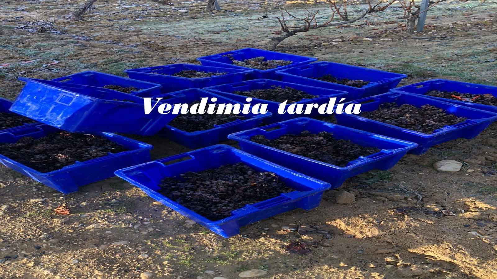 Valdelacierva Vendimia Tardía