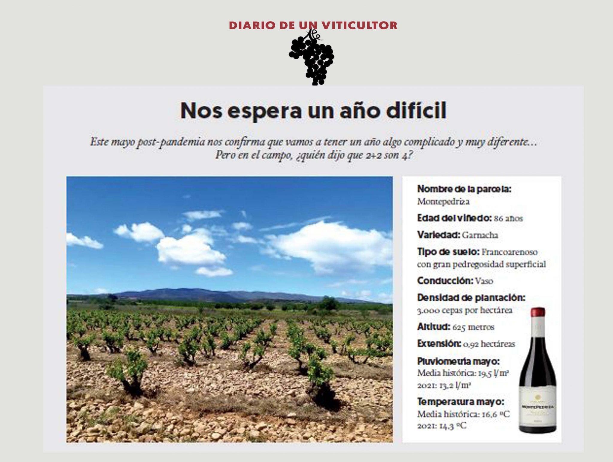 Diario de un viticultor – parte 3
